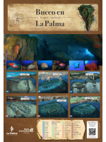 Póster Red de puntos de buceo de La Palma